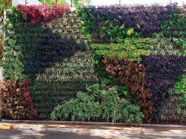 aleroarquitectura-paisajismo-jardin-muro-vegetal-portafolio